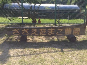写真 2015-05-08 15 49 55